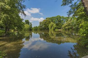 Potoky a rybníky